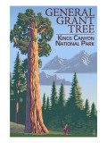 General Grant Tree - Kings Canyon National Park, California Prints by  Lantern Press