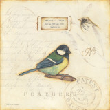 Color Bird IV Pósters por Stephanie Marrott