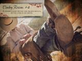 Cowboy Reason 4 Poster by Shawnda Eva