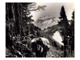 Hoh-Solduc Trail, Olympic Peninsula, Undated Giclee Print by Asahel Curtis