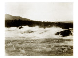 The Cascades, Columbia River, 1916 Premium Giclee Print by Asahel Curtis and Walter Miller