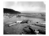 Neah Bay Low Tide, 1914 Giclee Print by Asahel Curtis