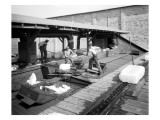 Icing Cars, Cold Storage Plant at Zillah, 1915 Giclee Print by Asahel Curtis