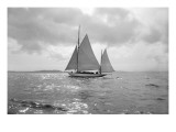 Sailing Boat Giclee Print by Asahel Curtis