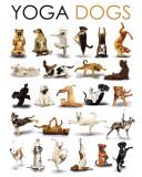Yoga - Hunde Kunstdrucke