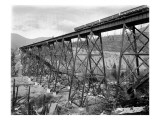 Bridge at Lester, WA, 1915 Giclee Print by Asahel Curtis