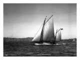 Sloop Sailboat Underway, Circa 1909 Giclee Print by Asahel Curtis