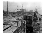 Port Commission Dock, Seattle, Undated Giclee Print by Asahel Curtis