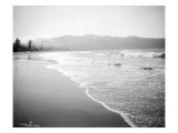 Coastline Scene, Washington, Circa 1910 Giclée-Druck von Asahel Curtis