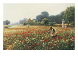 Picking Posies Giclee Print by William Kay Blacklock
