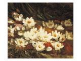 Wasserlilien Giclée-Druck von William Jabez Muckley