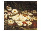 Waterlilies Giclee Print by William Jabez Muckley