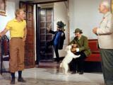 Georges Wilson, Georges Loriot et Jean-Pierre Talbot : Tintin et Les Oranges Bleues, 1964 Papier Photo par Marcel Dole