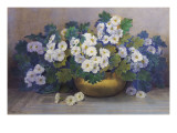 A Bowl of Primulas Giclee Print by Edith Barrow