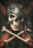 Anne Stokes - Pirate Skull Prints