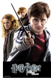 Harry Potter Group 2 - Harry Potter and the Deathly Hallows Wall Decal