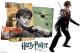Harry Potter - Harry Potter and the Deathly Hallows Wall Decal