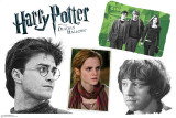 Harry Potter Group - Harry Potter and the Deathly Hallows Wall Decal