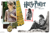 Hermione Granger - Harry Potter and the Deathly Hallows Wall Decal