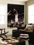Washington Wizards v Detroit Pistons: Richard Hamilton Wall Mural by Allen Einstein