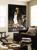 Springfield Armor v Erie BayHawks: Ivan Johnson Wall Mural by Robert Frank