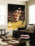 Charlotte Bobcats v Miami Heat: LeBron James Wall Mural by Issac Baldizon