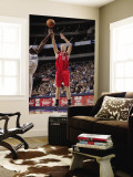 Houston Rockets v Dallas Mavericks: Chase Budinger and Brendan Haywood Wall Mural by Glenn James