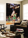 Boston Celtics v New York Knicks: Amar'e Stoudemire and Semih Erden Wall Mural by Lou Capozzola