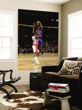 New York Knicks v Toronto Raptors: Amar'e Stoudemire and Amir Johnson Wall Mural by Ron Turenne