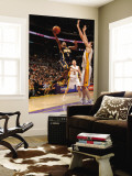 Indiana Pacers v Los Angeles Lakers: T.J. Ford and Pau Gasol Wall Mural by Andrew Bernstein