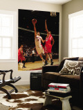 Houston Rockets v Toronto Raptors: Jose Calderon and Chuck Hayes Wall Mural by Ron Turenne