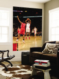 Houston Rockets v Toronto Raptors: Jarrett Jack and Kyle Lowry Wall Mural by Ron Turenne