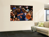 New York Knicks v Denver Nuggets: Amar&#39;e Stoudemire Wall Mural by Doug Pensinger