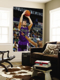 Sacramento Kings v New Orleans Hornets: Beno Udrih and Willie Green Wall Mural by Chris Graythen
