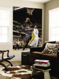 Charlotte Bobcats v Indiana Pacers: Kwame Brown and James Posey Wall Mural by Ron Hoskins