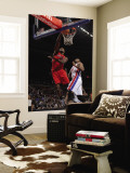 Toronto Raptors v Detroit Pistons: Joey Dorsey and Greg Monroe Wall Mural by Allen Einstein