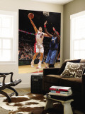 Washington Wizards v Toronto Raptors: Jose Calderon and Andray Blatche Wall Mural by Ron Turenne