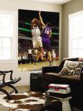 Phoenix Suns v Charlotte Bobcats: Derrick Brown and Hedo Turkoglu Wall Mural by Kent Smith