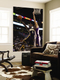Indiana Pacers v Phoenix Suns: Darren Collison and Hedo Turkoglu Wall Mural by Christian Petersen