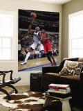 Chicago Bulls v Dallas Mavericks: Jason Terry and Luol Deng Wall Mural by Glenn James