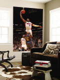 Charlotte Bobcats v Miami Heat: Dwyane Wade and Sherron Collins Wall Mural by Victor Baldizon