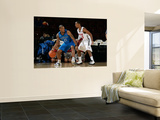 Texas Legends v Idaho Stampede: Antonio Daniels and Lance Hurdle Wall Mural by Otto Kitsinger