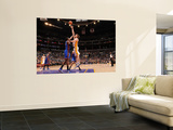 New York Knicks v Los Angeles Lakers, Los Angeles, CA - January 9: Pau Gasol and Amar'e Stoudemire Wall Mural by Noah Graham