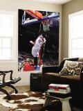 Toronto Raptors v Detroit Pistons: Will Bynum Wall Mural by Allen Einstein