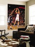 Memphis Grizzlies v Phoenix Suns: Hedo Turkoglu Wall Mural by Barry Gossage