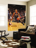 Charlotte Bobcats v Miami Heat: Shaun Livingston Wall Mural by Victor Baldizon