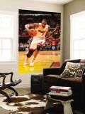 Indiana Pacers v Miami Heat: Chris Bosh Wall Mural by Victor Baldizon