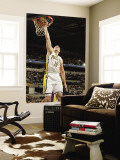 Los Angeles Lakers v Indiana Pacers: Jeff Foster Wall Mural by Ron Hoskins