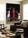 Toronto Raptors v Detroit Pistons: Linas Kleiza, Ben Wallace and Greg Monroe Wall Mural by Allen Einstein