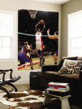 New York Knicks v Toronto Raptors: Ed Davis and Toney Douglas Wall Mural by Ron Turenne